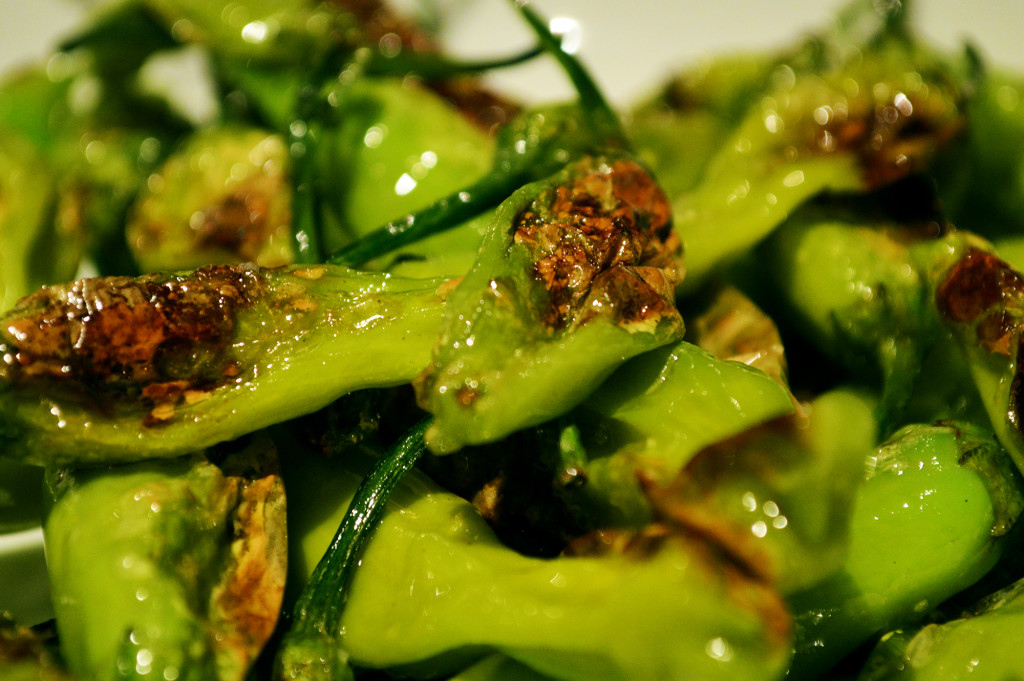 Close up of Bister Shishito Peppers