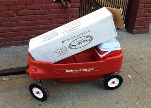 Picture of the legs, in a box, in a child's radio flyer red wagon.